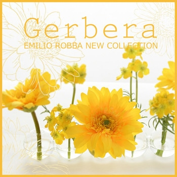 NEW COLLECTION - Gerbera -