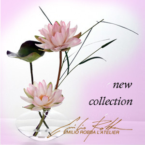 NEW COLLECTION LOTUS【EMILIO ROBBA】